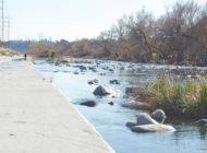 Congressman testifies against use of glyphosate in Los Angeles River