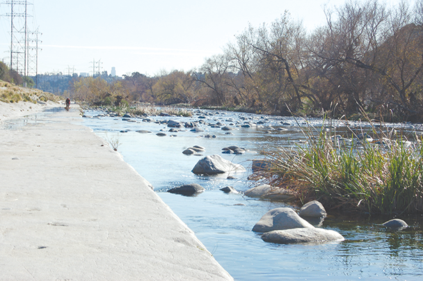 Opposition is growing against the use of the herbicide glyphosate to control vegetation in the L.A. River. (photo by Edwin Folven)