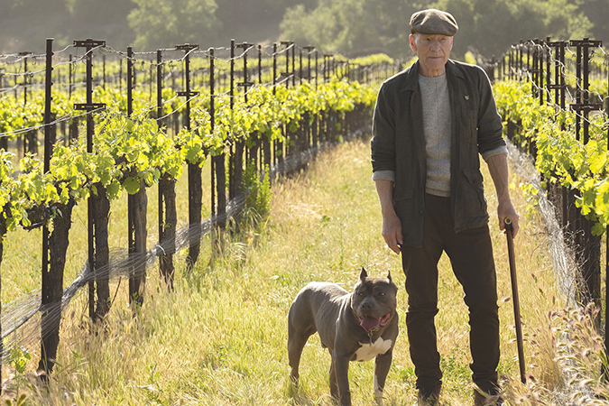 "Jean-Luc Picard (Patrick Stewart) is retired and prefers the solitude of his winery, but is thrust back into duty in ""Star Trek: Picard."" (photo courtesy of CBS All Access)"