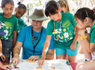NHM's Adventures in Nature summer camp continue online