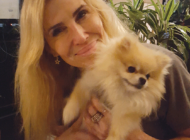 Prized Pomeranian returns home