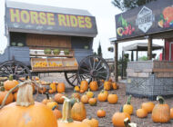 Hop aboard the PumpkinLiner for fall fun