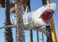 Academy Museum installs shark model from 'Jaws'