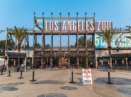 L.A. Zoo reopens after two-month closure