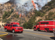 Preparedness stressed to reduce Beverly Hills wildfires