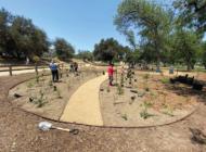 LAPF installs demo forest at Bette Davis Park