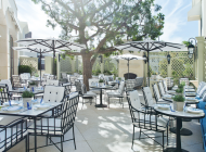 The Peninsula, a grand retreat in Beverly Hills